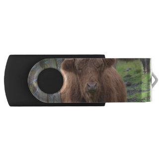 Cute Highland Cow by Fence Swivel USB 2.0 Flash Drive