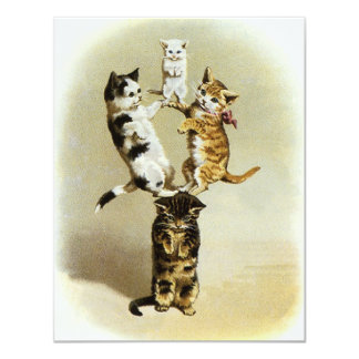 Cute Humor, Vintage Victorian Cats Kittens Playing 11 Cm X 14 Cm Invitation Card