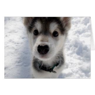 Cute husky puppy photo customizable greeting card