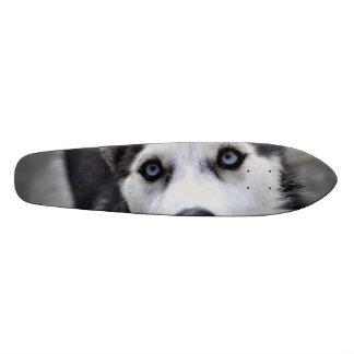 Cute Husky Skate Boards