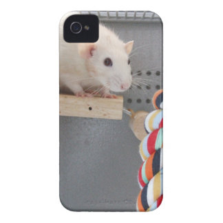 Cute I Love Rats iPhone 4 Covers