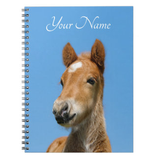 Cute Icelandic Horse Foal Pony Head Front - Name - Notebook