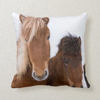 Cute Icelandic Horses Together Cushion