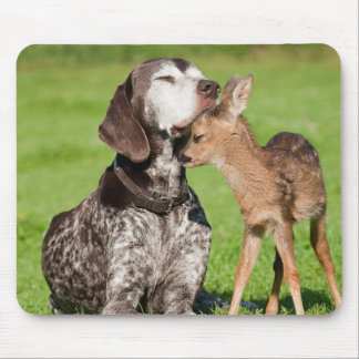 Cute images of a Dog And Fawn together Mouse Pad