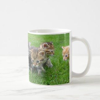 Cute Innocent Kittens Coffee Mug