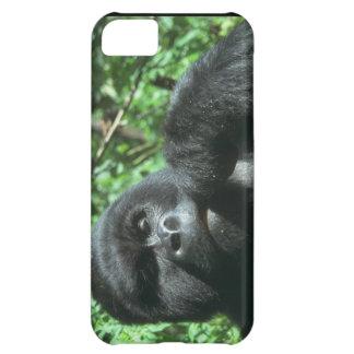 Cute iPhone 5 Cases Beautiful Gorilla