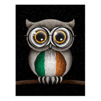 Cute Irish Flag Owl Wearing Glasses Post Cards