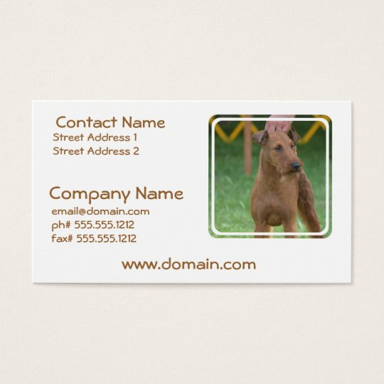 Cute Irish Terrier Business Card