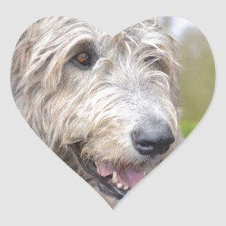 Cute Irish Wolfhound Heart Sticker