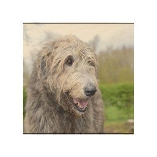 Cute Irish Wolfhound Wood Print