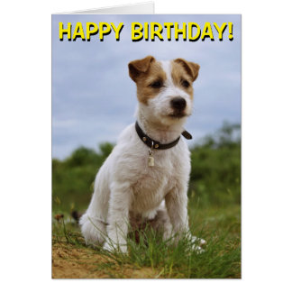 Happy jack russell greeting cards zazzle cute jack russell birthday card bookmarktalkfo Image collections