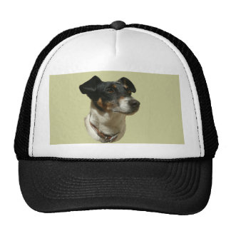Cute Jack Russell Dog Mesh Hats