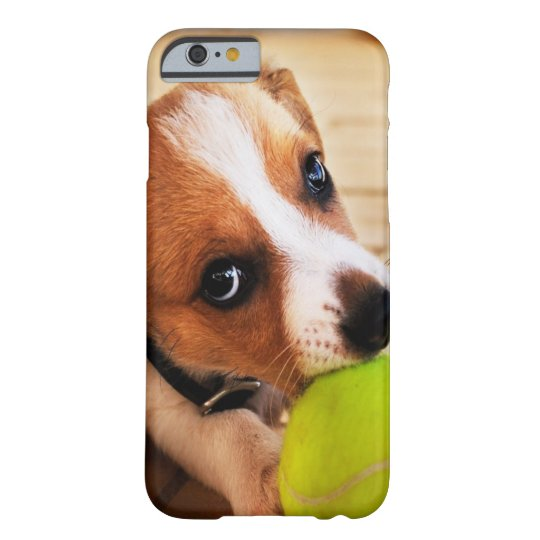 Cute Jack Russell Puppy Barely There iPhone 6