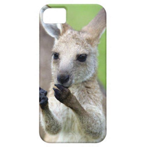 Cute joey kangaroo iPhone 5 covers