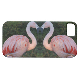 Cute Kissing Flamingo Photography iPhone 5 Covers