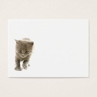 cute kitten business card