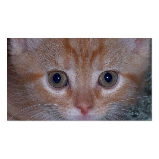 Cute Kitten Business Cards