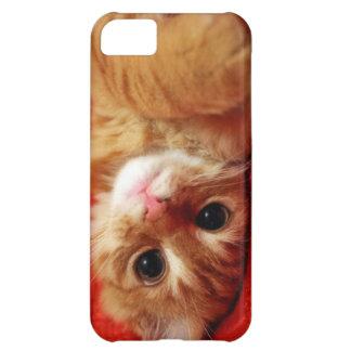 cute kitten iPhone 5C case
