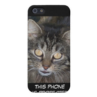Cute Kitten Case For iPhone 5/5S