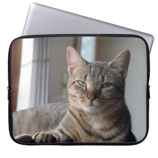 Cute Kitten Cat Laptop Sleeve  (Misty)
