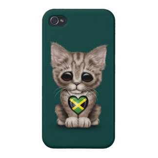 Cute Kitten Cat with Jamaican Flag Heart teal Cases For iPhone 4