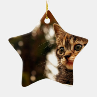 Cute Kitten Ceramic Star Decoration