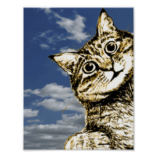 Cute Kitten Funny Cat Picture Poster