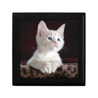 Cute Kitten Gift Box