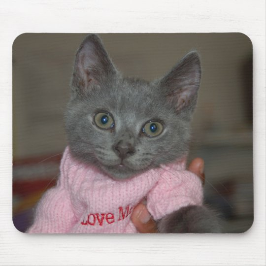 Cute Kitten in Sweater Mouse Mat