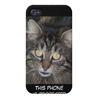 Cute Kitten iPhone 4/4S Covers