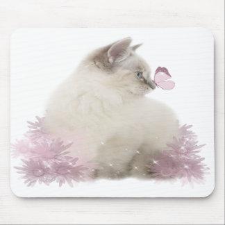 cute kitten mousepad