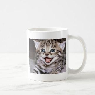Cute Kitten Mugs