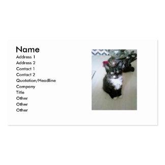 Cute kitten pack of standard business cards