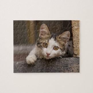 Cute kitten peeking out, Turkey Jigsaw Puzzle