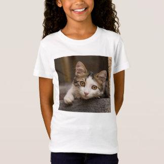 Cute kitten peeking out, Turkey T-Shirt