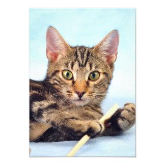 Cute kitten playing 13 cm x 18 cm invitation card