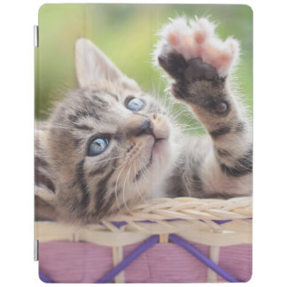 Cute Kitten Playing In Basket iPad Cover