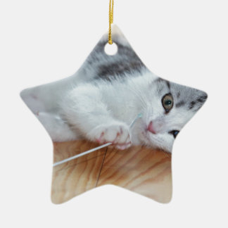 Cute Kitten playing with string Christmas Ornament