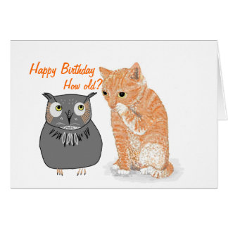 Cute Kitten  Products Greeting Card