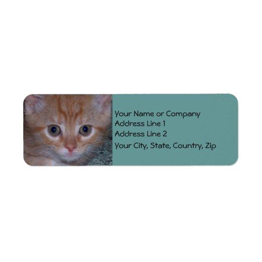 Cute Kitten Return Address Label