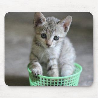 Cute kitten sitting in a green basket mouse pad