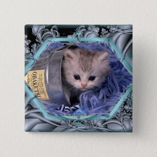 Cute kitten square button