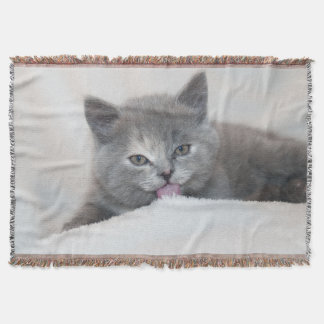 Cute Kitten Throw Blanket