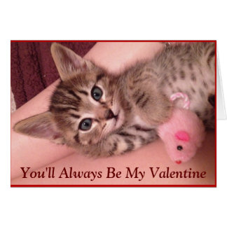 Cute Kitten Valentine's Day Card (Animal Rescue)