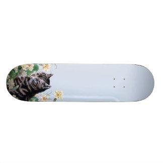 Cute kitten - vintage cat art 19.7 cm skateboard deck
