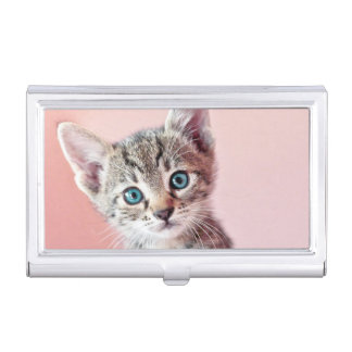 Cute kitten with blue eyes. business card holder