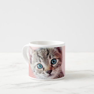 Cute kitten with blue eyes. espresso cup