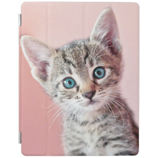 Cute kitten with blue eyes. iPad cover