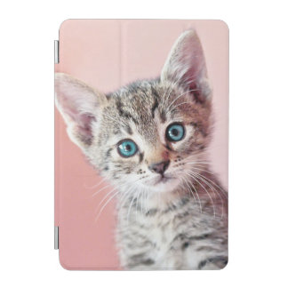 Cute kitten with blue eyes. iPad mini cover