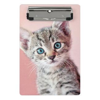 Cute kitten with blue eyes. mini clipboard